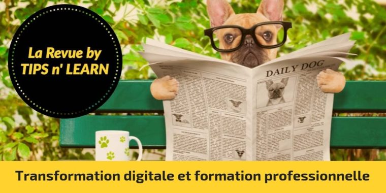 Transformation digitale et formation professionnelle