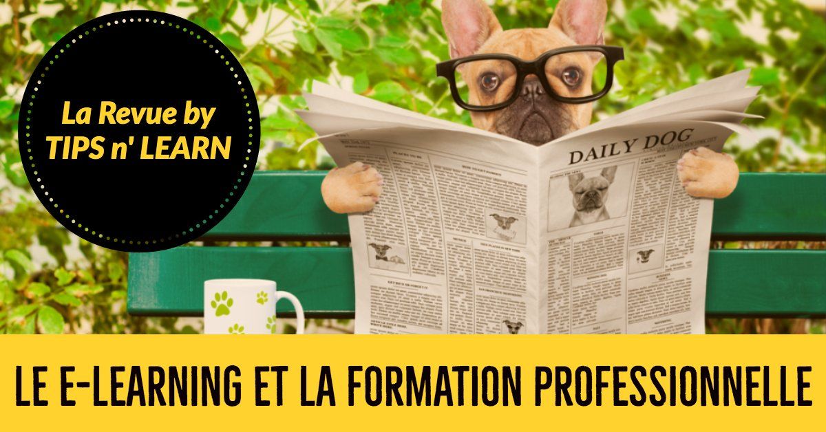e-learning et formation professionnelle